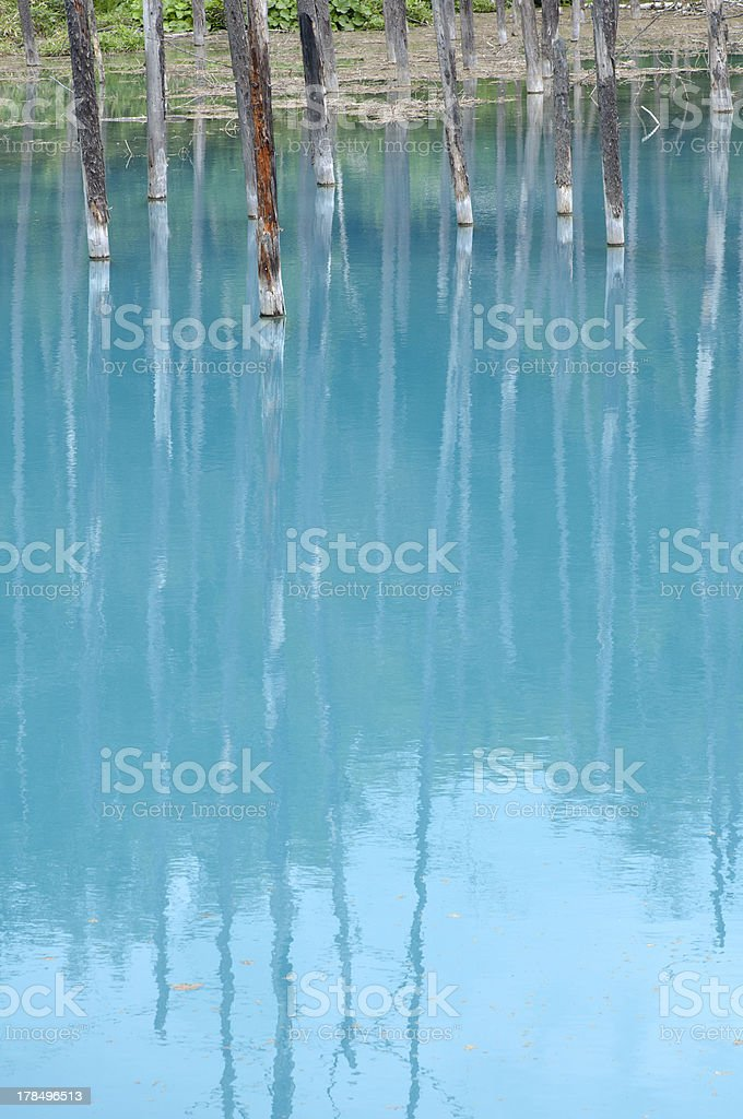 Blue Pond in Japan royalty-free stock photo