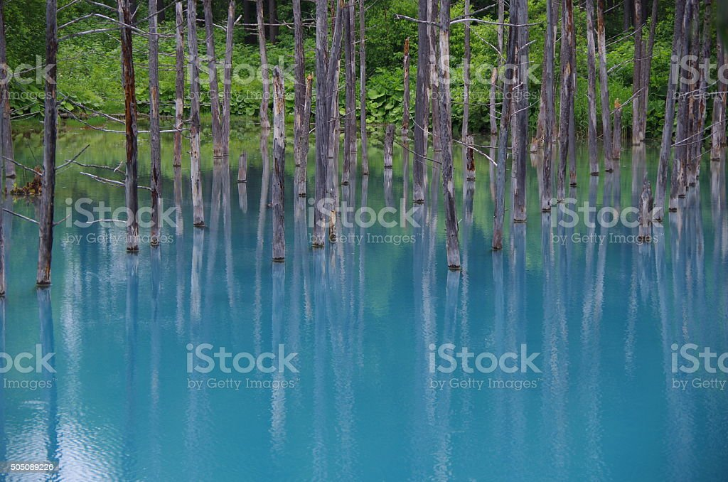 Blue Pond stock photo