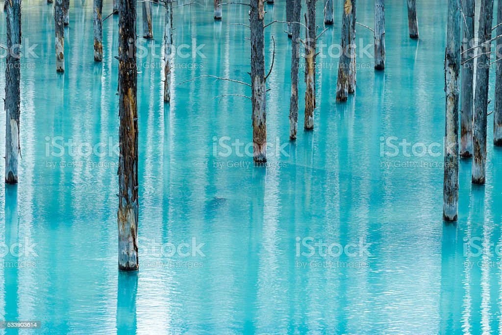 Blue Pond (Aoiike) stock photo