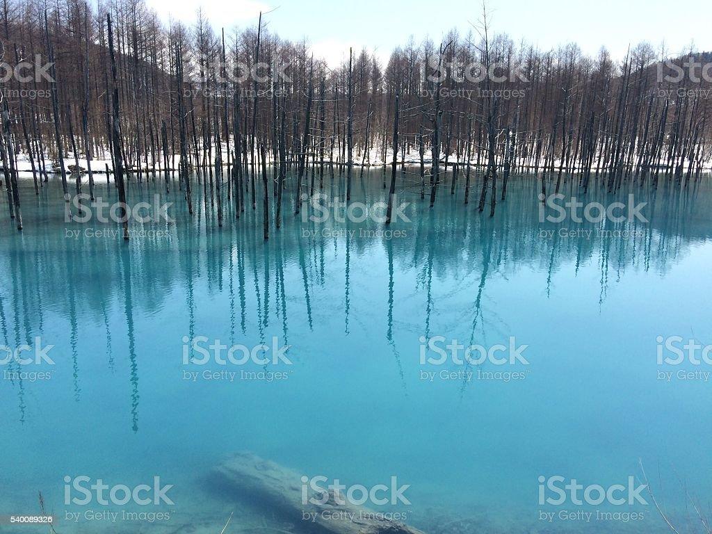 Azul Pond foto de stock royalty-free