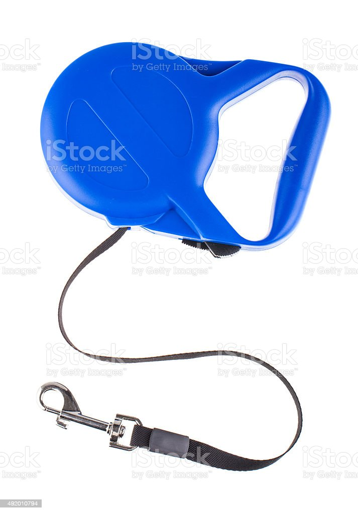 Blue retractable leash for dog top view stock photo