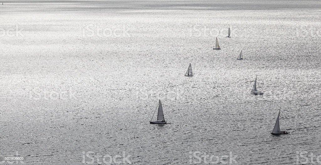 Blue Ribbon Regatta on Lake Balaton stock photo