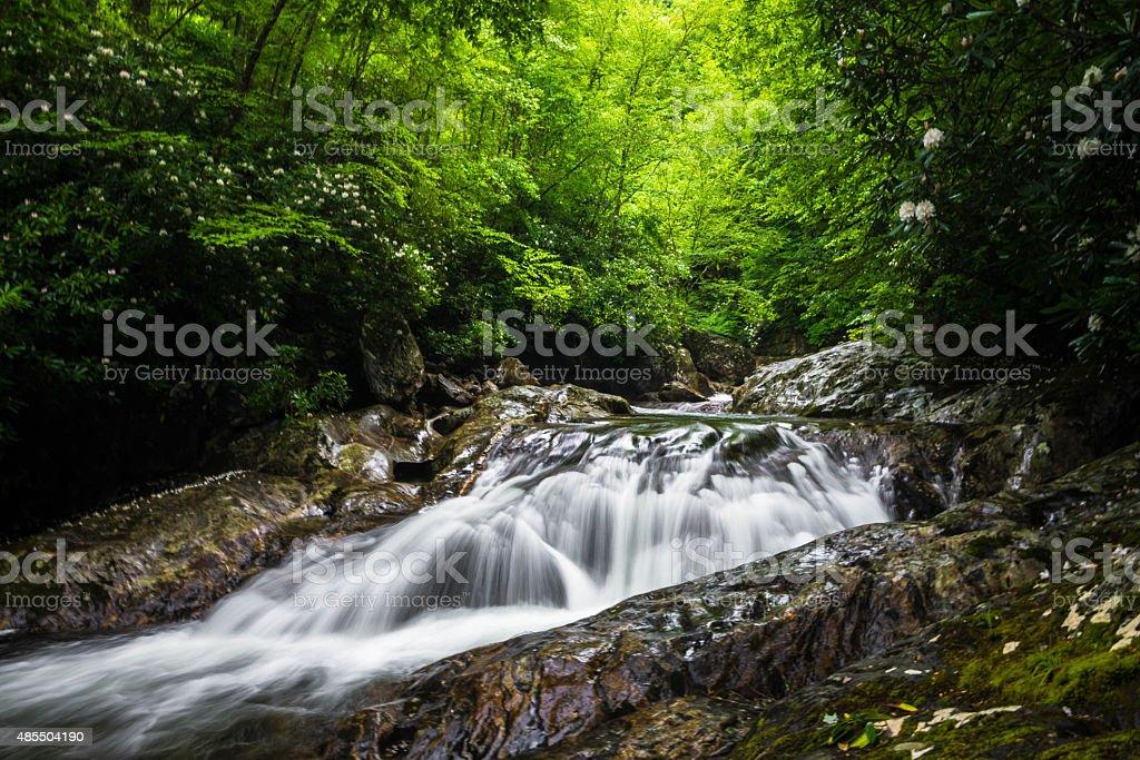Blue Ridge Mountain Stream 2 stock photo