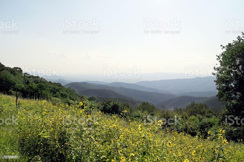 Blue Ridge Mountains, Appalachians, Virginia royalty-free stock photo