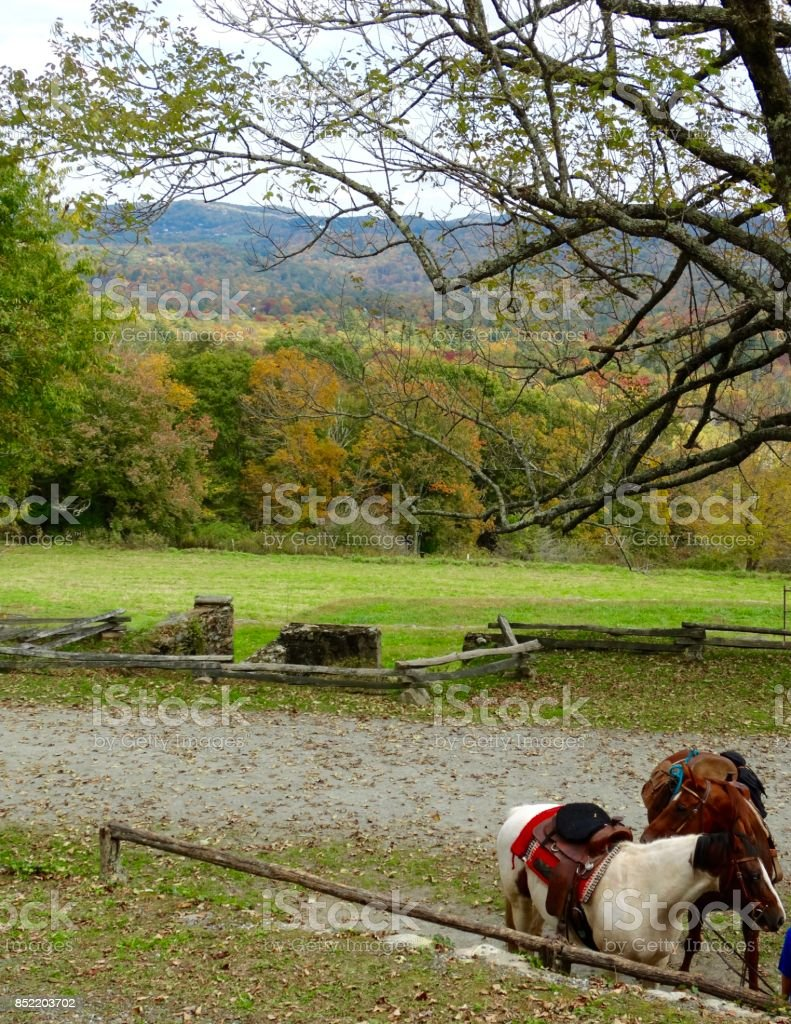 Blue Ridge Parkway in autumn stock photo
