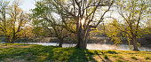 Blue River Sunrise, Oklahoma