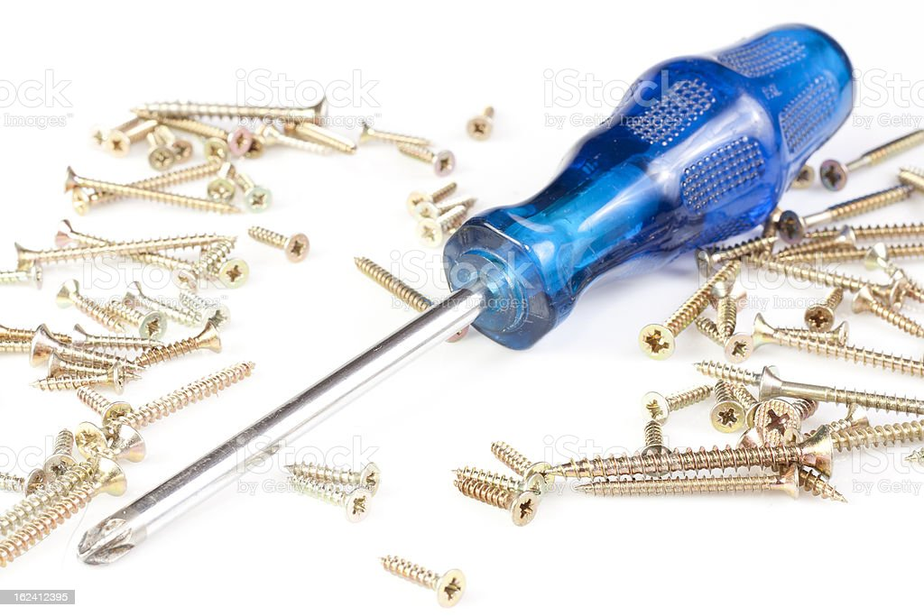 Blue screwdriver surrounded by many tech screws. royalty-free stock photo