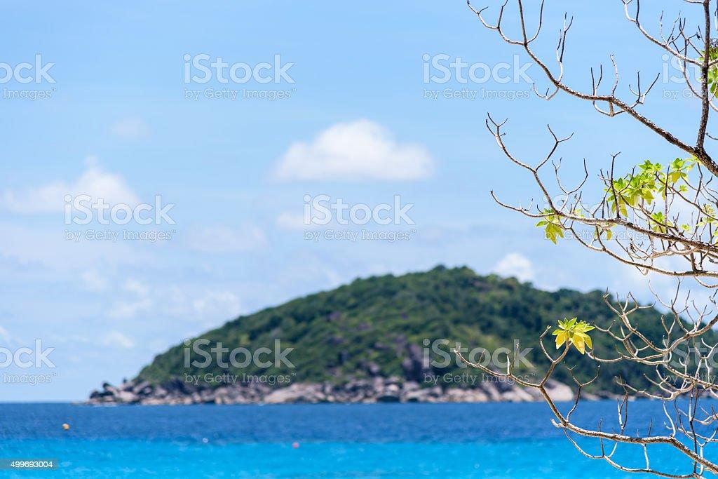 Blue sea at Similan in Thailand stock photo