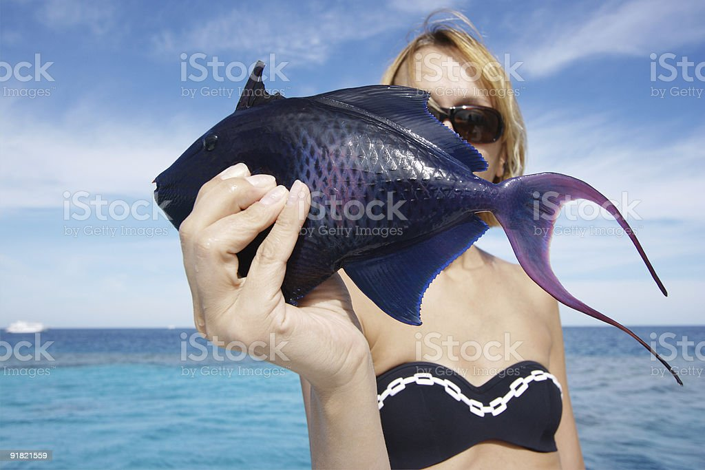 Blue sea fish royalty-free stock photo