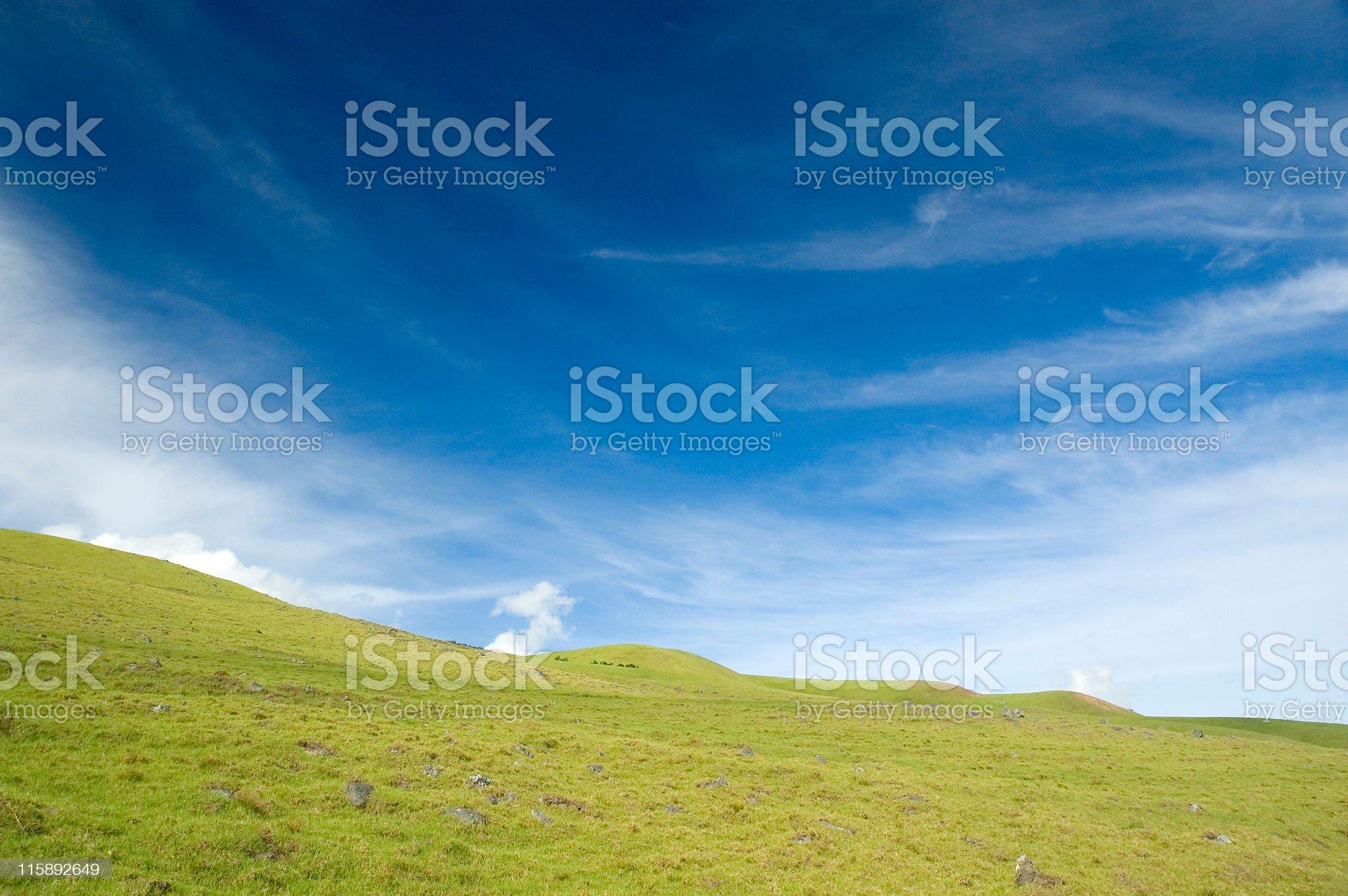 Blue Skies royalty-free stock photo