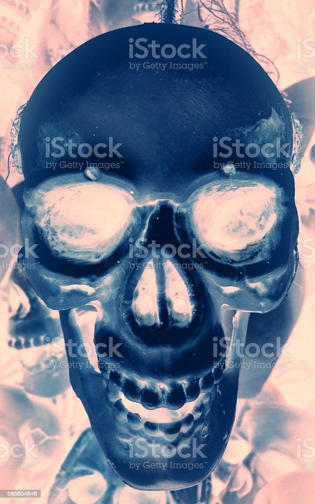 Blue Skull stock photo