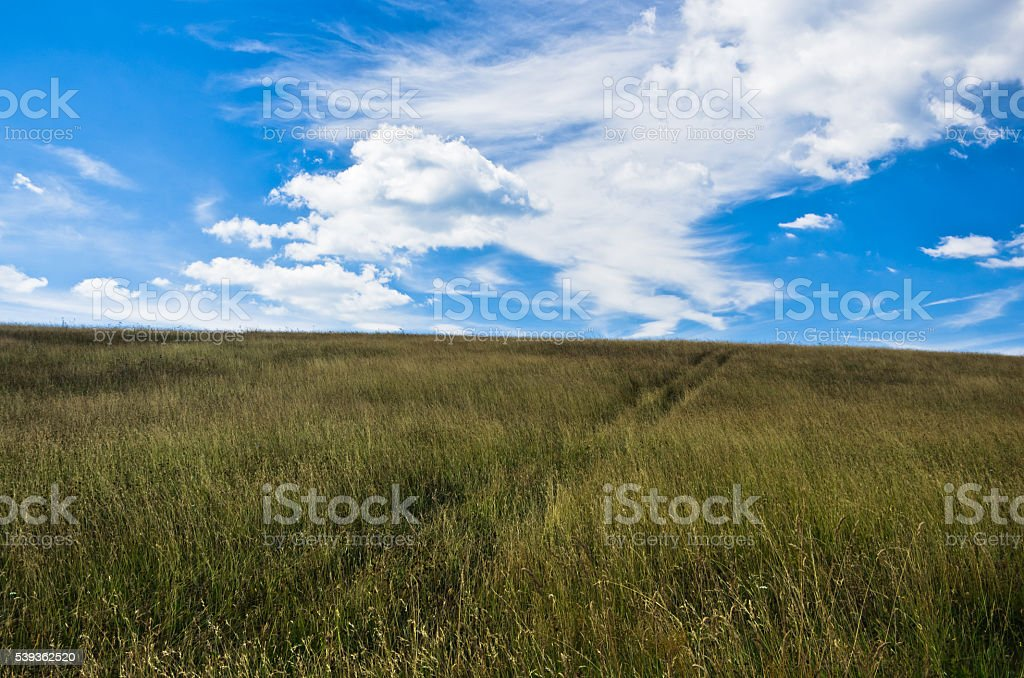 Blue sky above hill covered with dry prairie grass stock photo