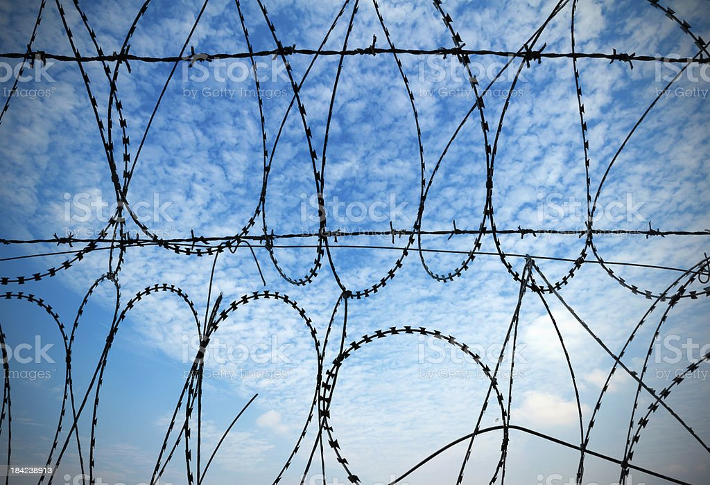 Blue sky and barbed wire stock photo