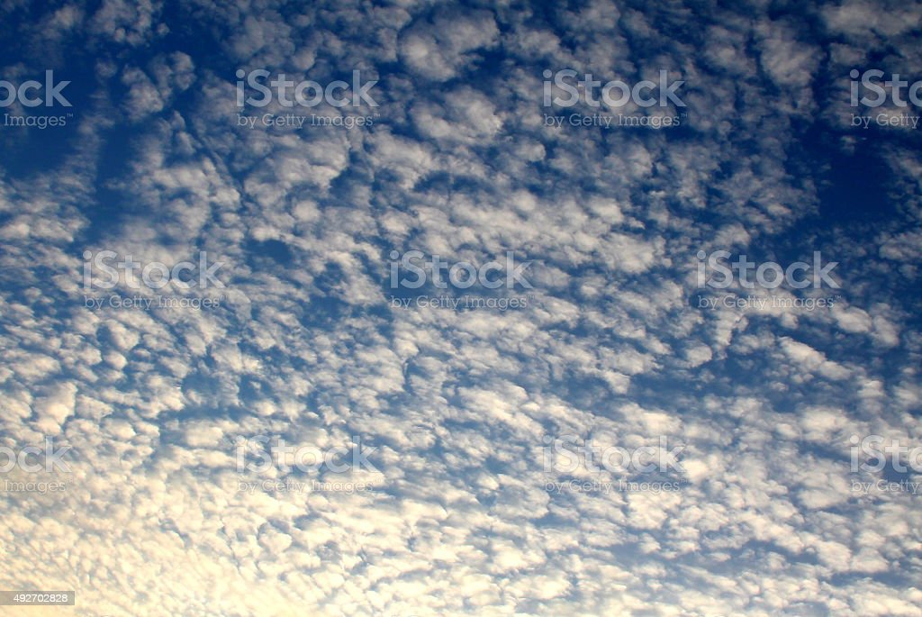 Blue Sky and Cotton wool clouds Cirrocumulus UK Autumn stock photo