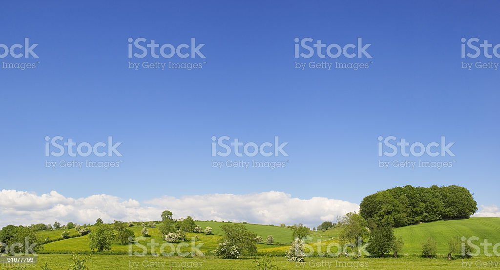 Blue sky and field royalty-free stock photo