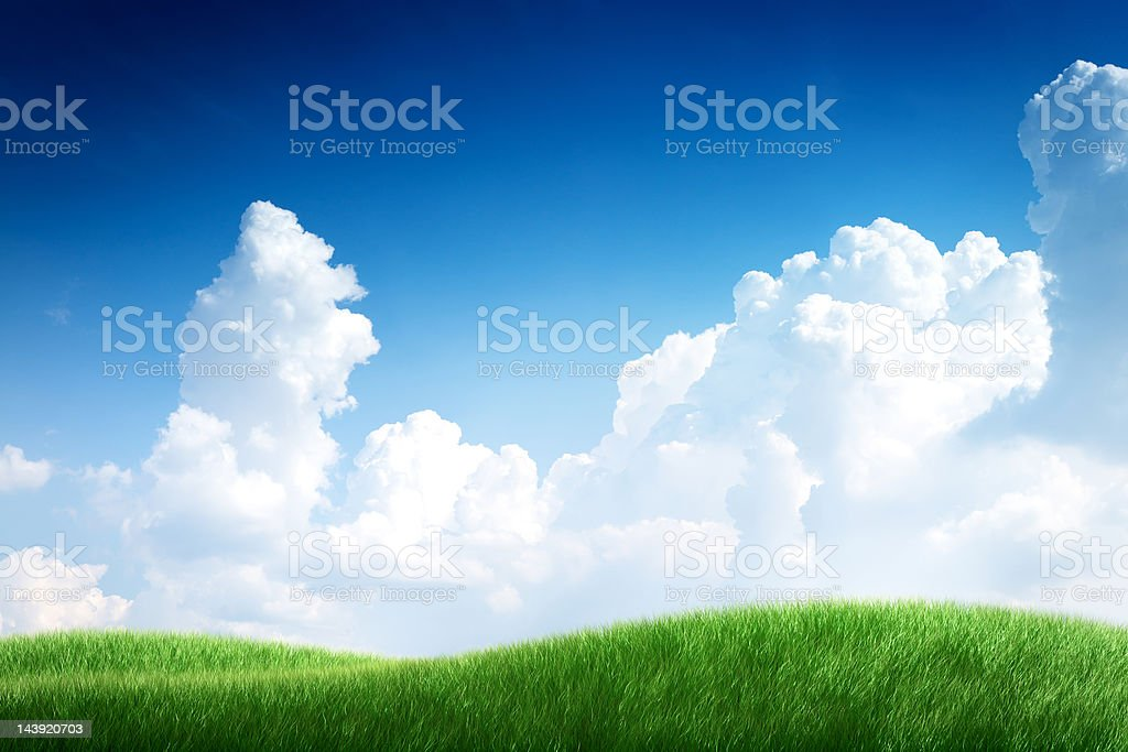 Blue sky and green grass. Nature background. royalty-free stock photo