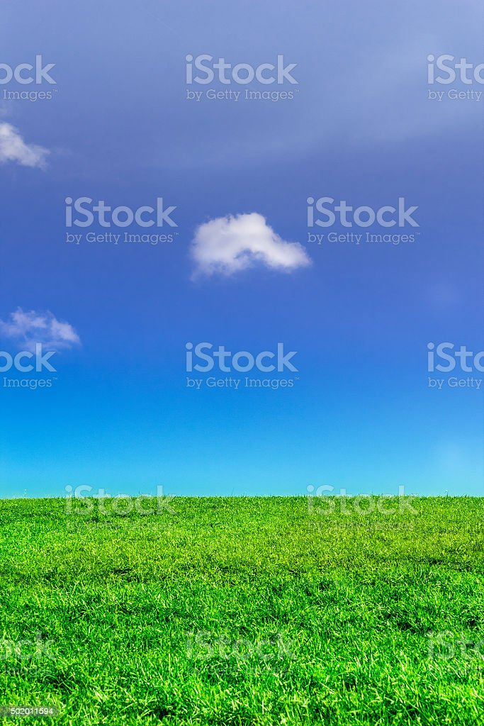 Blue sky and green grass on hill in summer stock photo