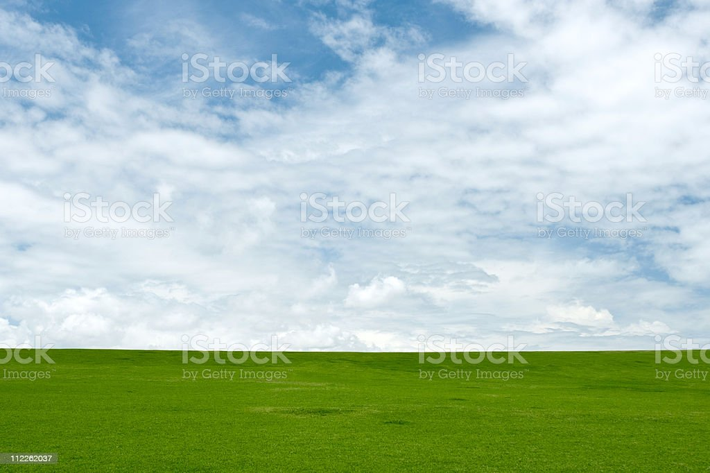 blue sky and green grass royalty-free stock photo