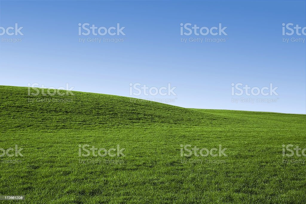Blue Sky and Green Grass (Background) royalty-free stock photo