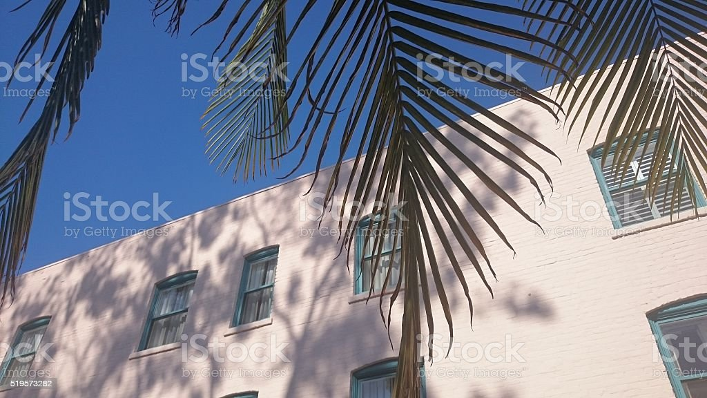 Blue Sky and Palm tree Shadows stock photo