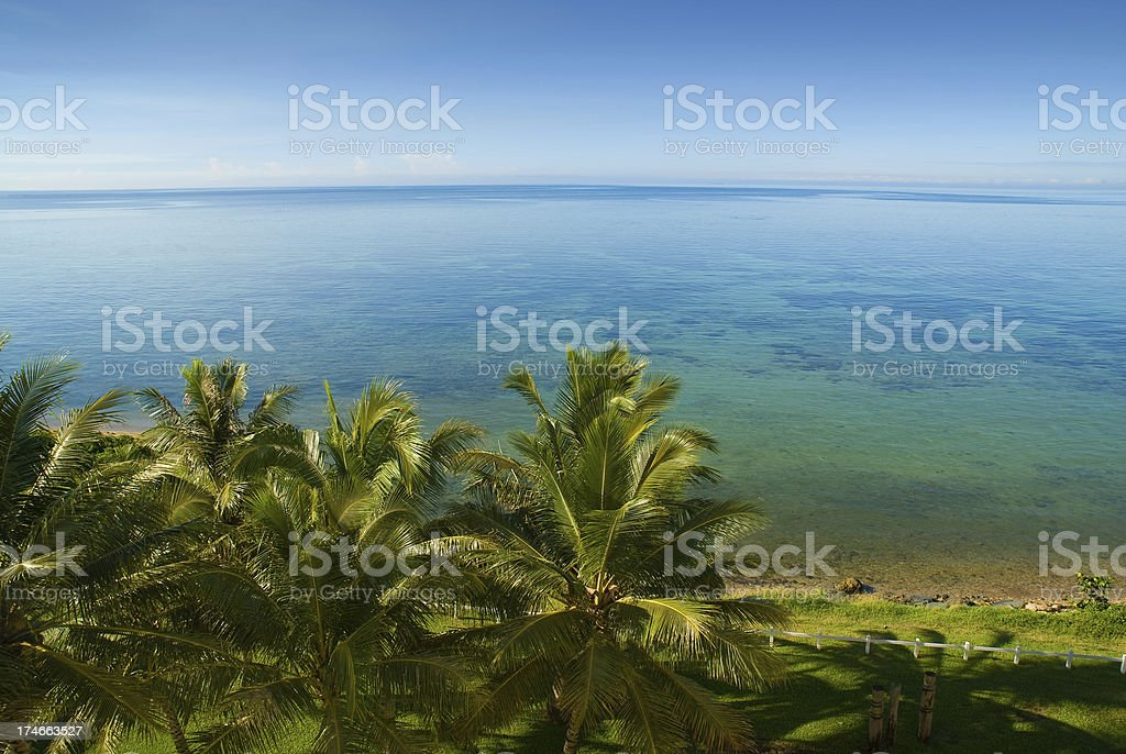 blue sky and palm trees at Noumea Bay stock photo
