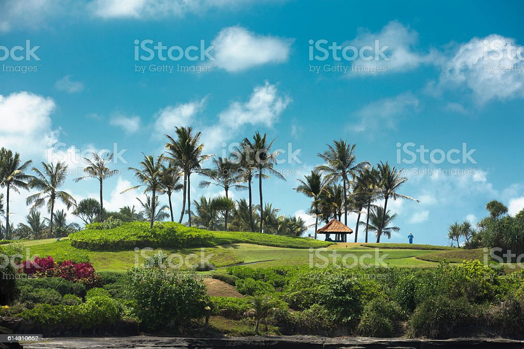 Blue sky and palm trees on the golf course. stock photo