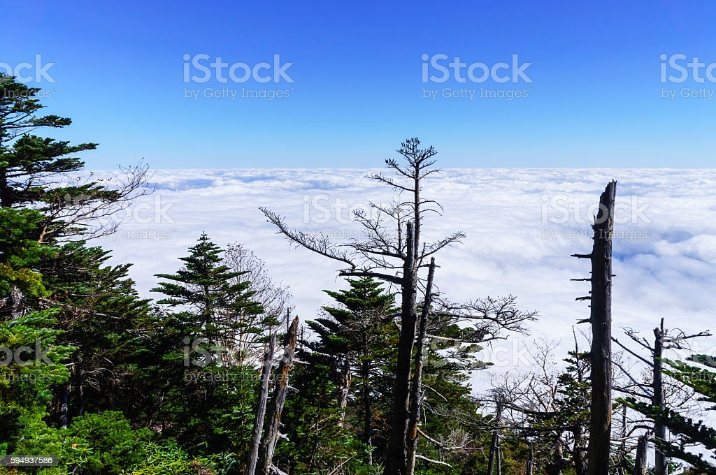 Blue Sky and Sea of Clouds stock photo