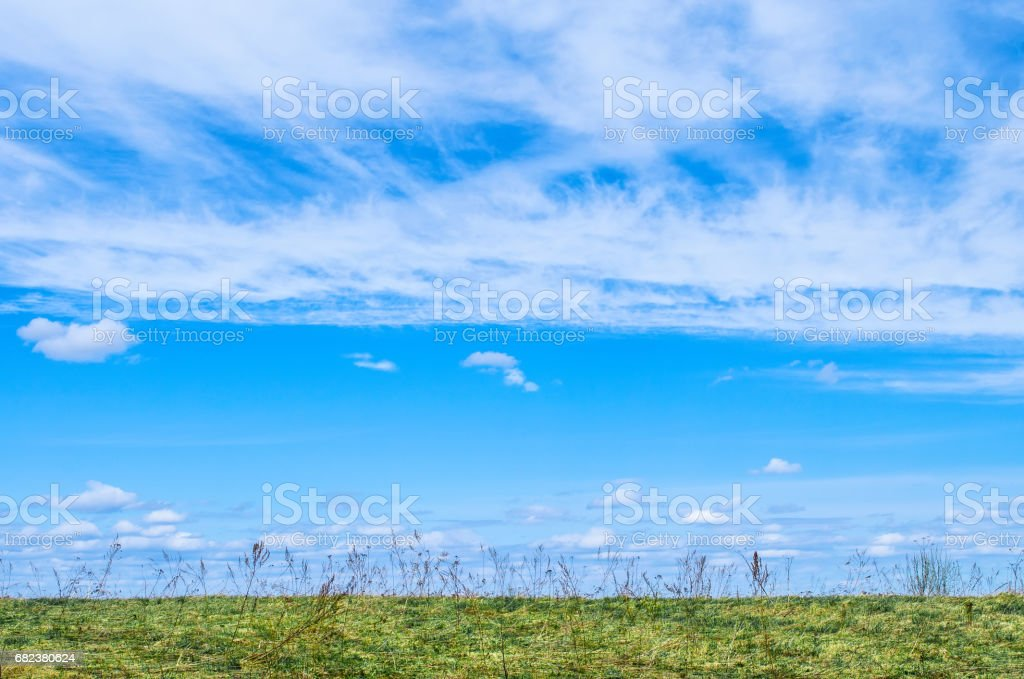 Blue Sky for the background and white cirrus, cirrus-like clouds under the field and grass. stock photo