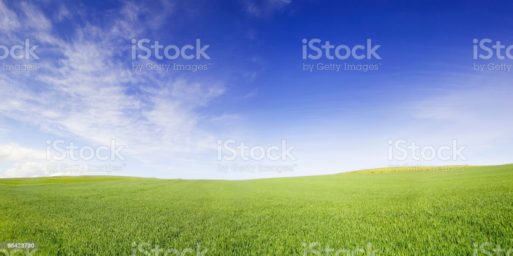 Blue Sky Green Field Panorama stock photo