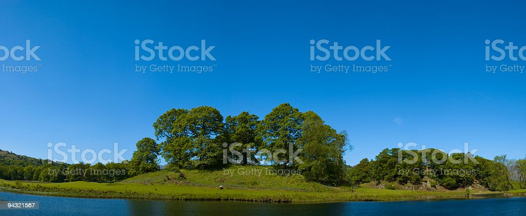 Blue sky, green pasture royalty-free stock photo