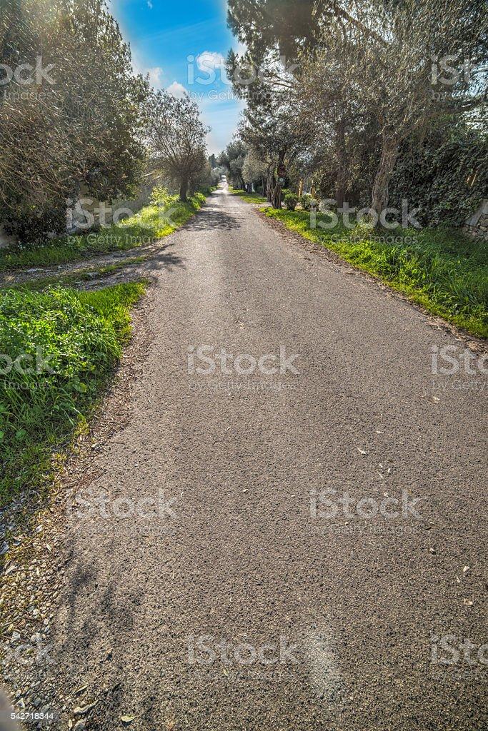 blue sky over a country road stock photo