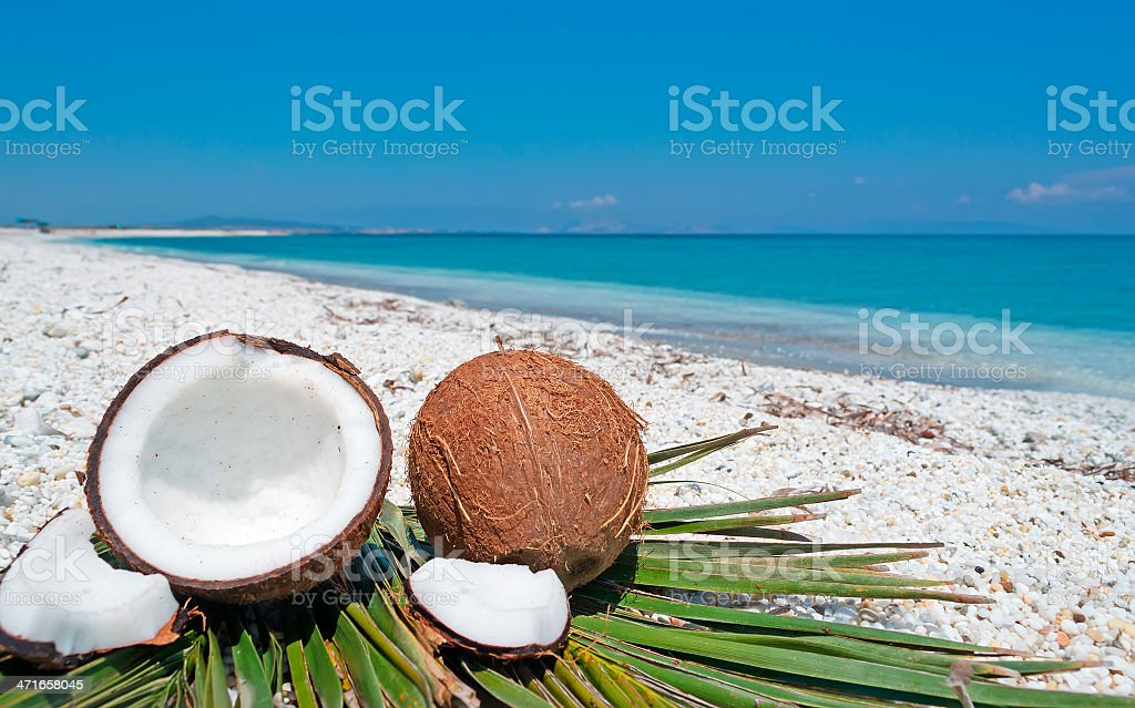 blue sky over coconuts royalty-free stock photo