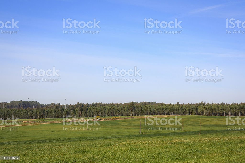 Blue sky over green plain field on Portugal royalty-free stock photo