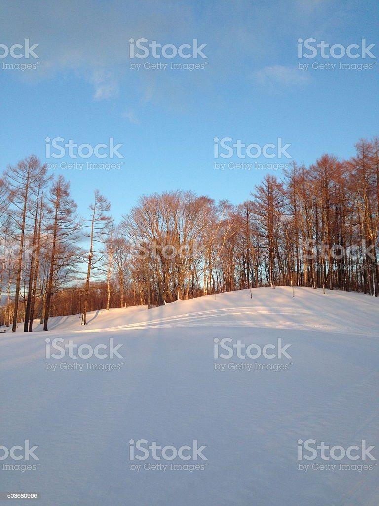blue sky over snow land1 stock photo