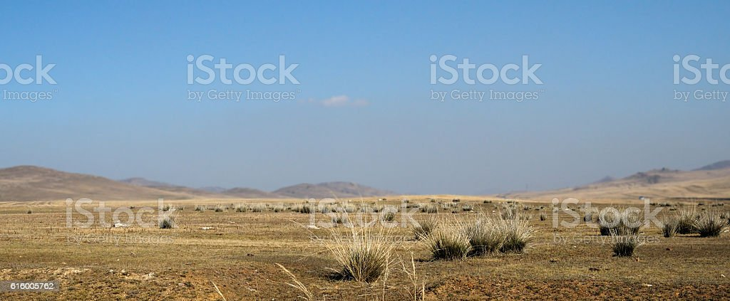 blue sky over the vast Mongolian steppes stock photo