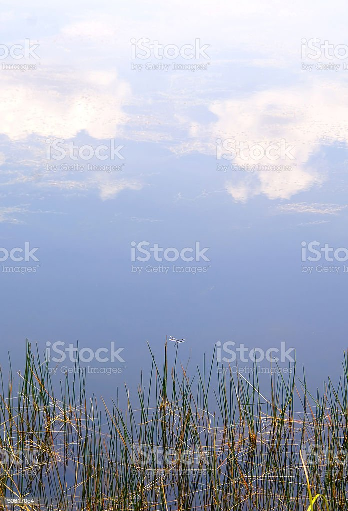 Blue sky reflected in shallow water royalty-free stock photo