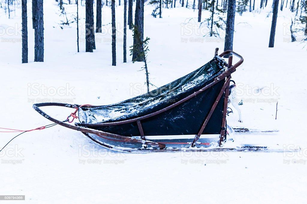 Blue sled on white snow stock photo