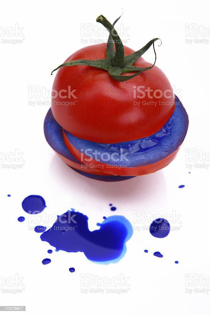 Blue tomato royalty-free stock photo