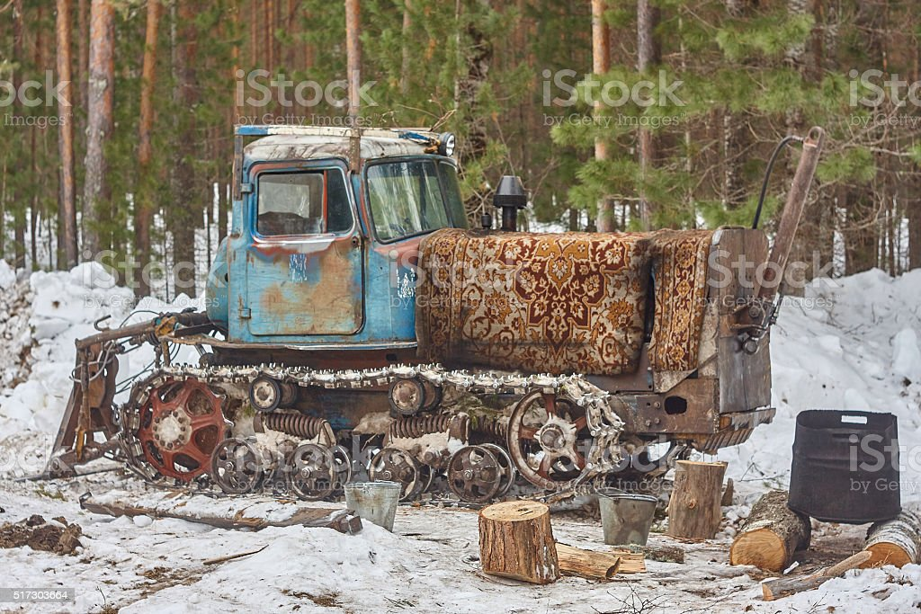 blue tractor in pine tree forest stock photo