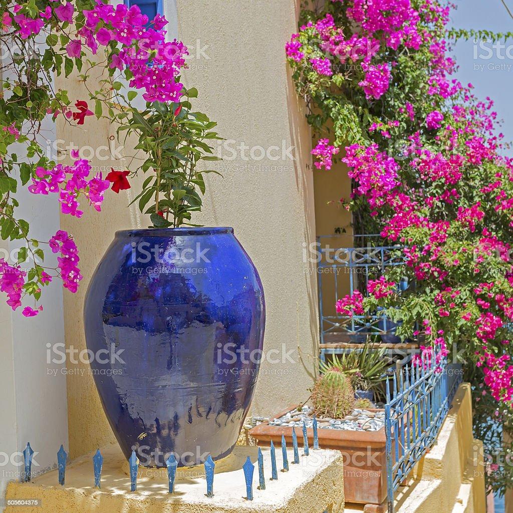 Blue vase royalty-free stock photo