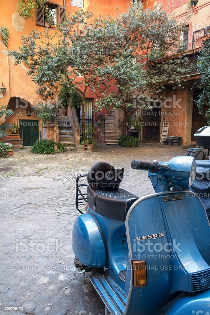 Blue Vespa scooter with cat in rustic courtyard, Rome Italy stock photo