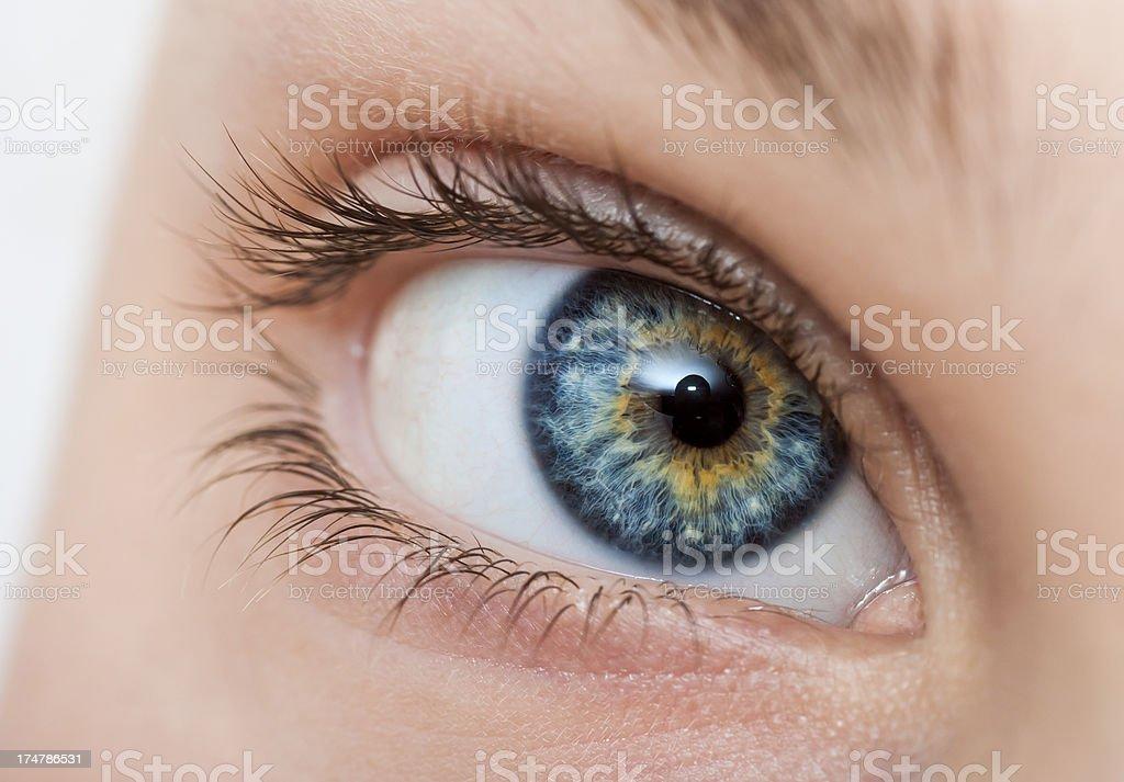 blue woman eye royalty-free stock photo