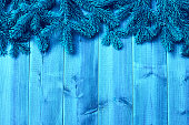 Blue wooden  boards and  christmas tree branches