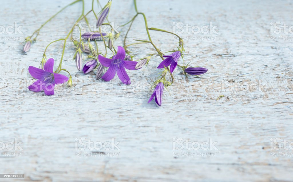 Bluebells on old wooden table. Vintage floral background. stock photo