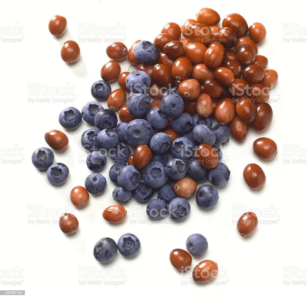 Blueberries and cranberries royalty-free stock photo