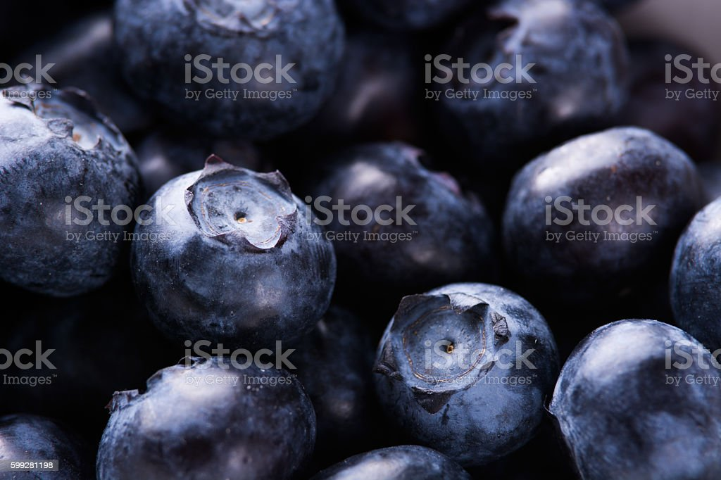 Blueberries close up view. Berries stock photo