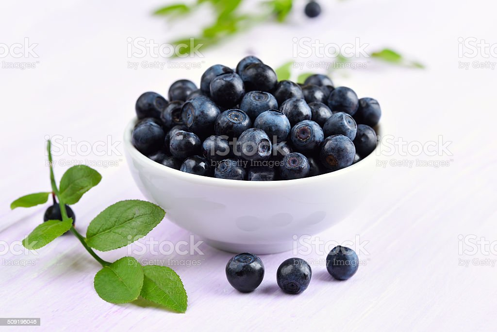 Blueberries in white bowl stock photo