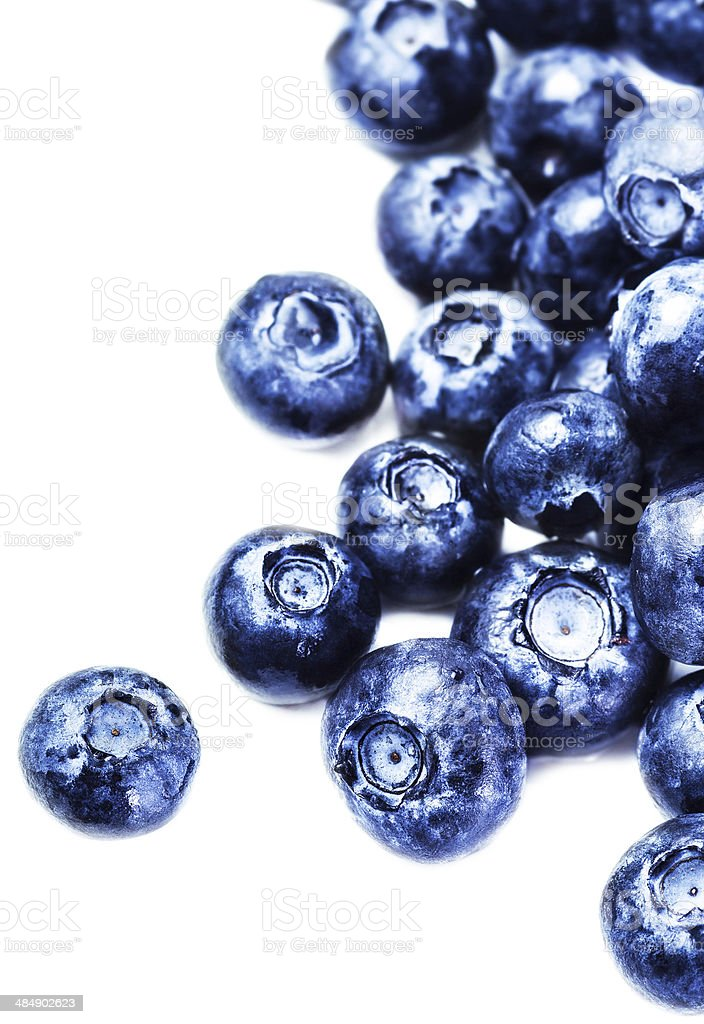 Blueberries isolated on white background with copy space stock photo