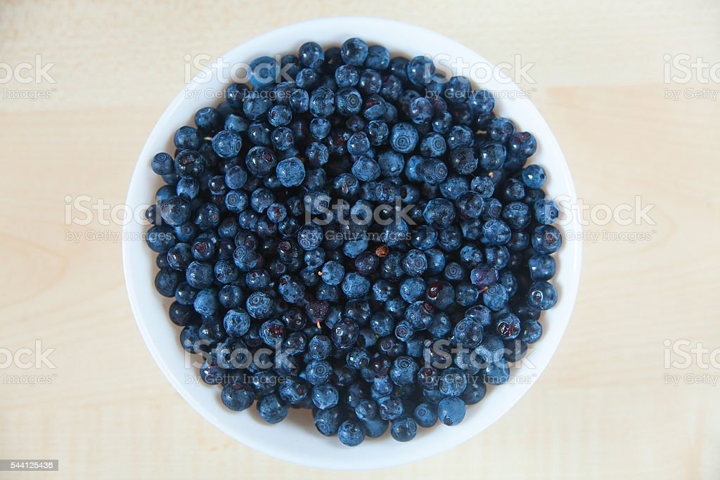 blueberries on a white background summer stock photo
