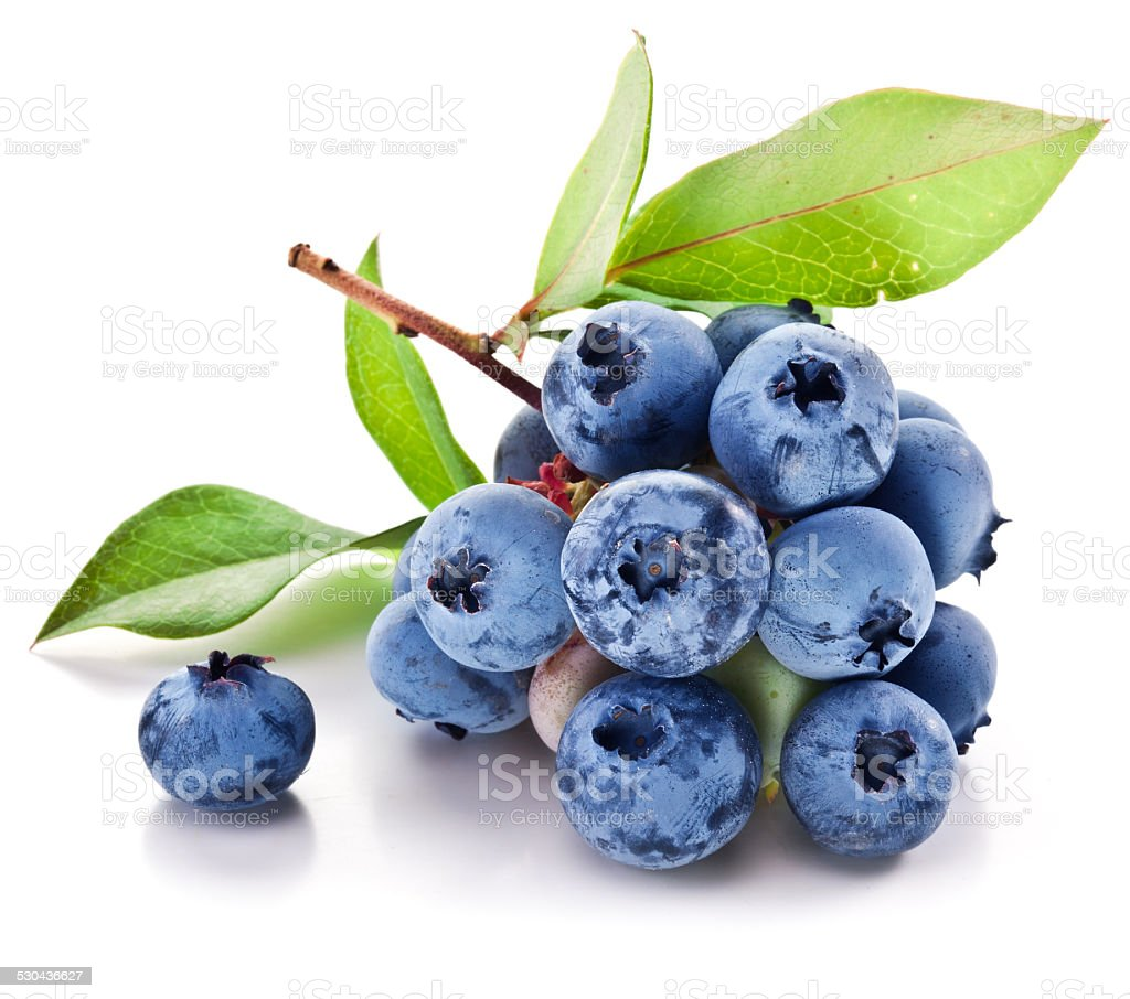 Blueberries with leaves on a white background. stock photo
